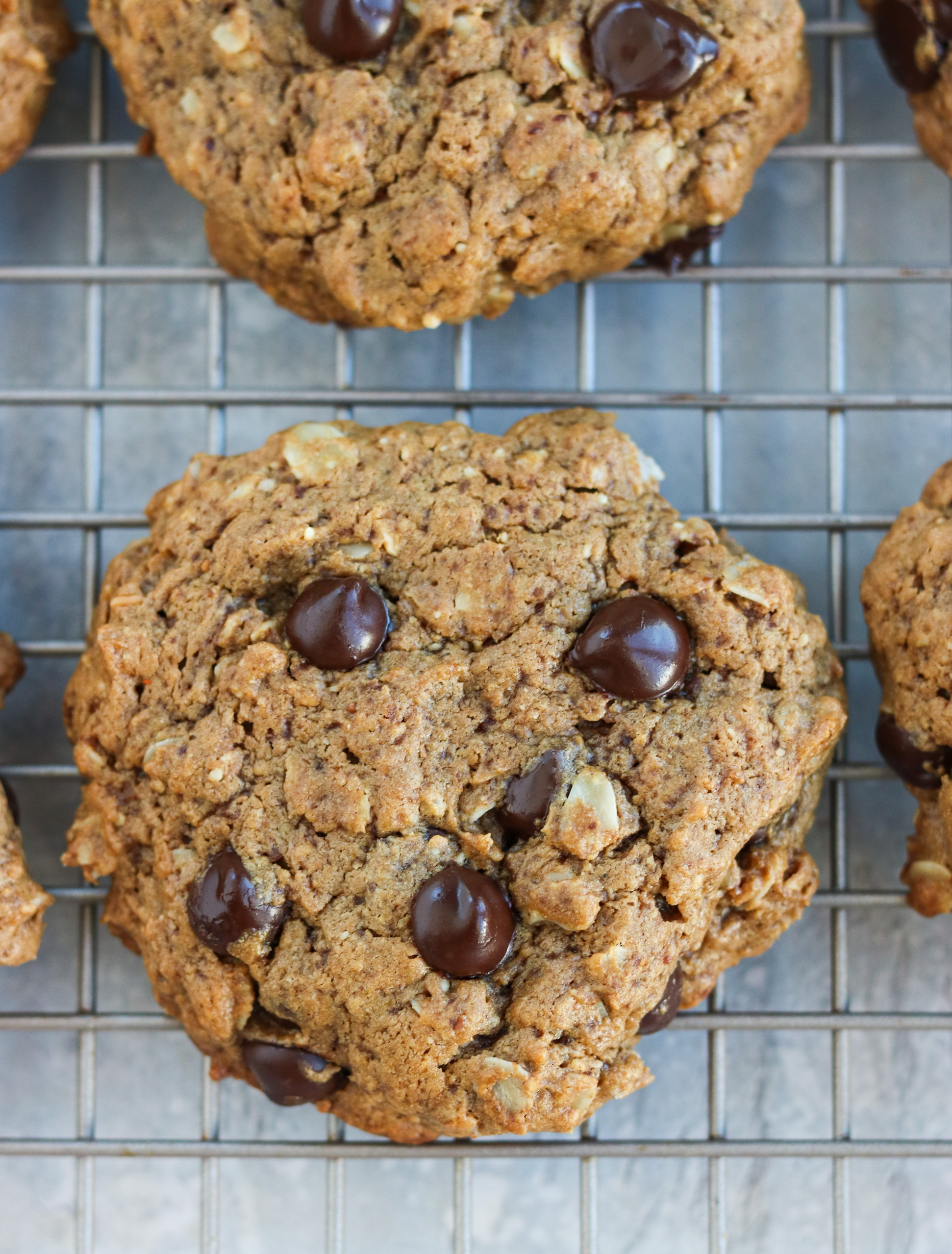 gluten free almond butter chocolate chip oatmeal cookies